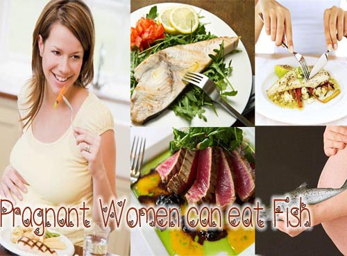 Fish and pregnancy